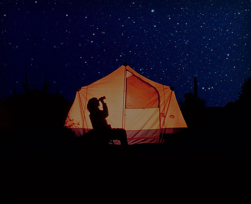 Star Gazing Night